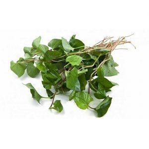 Kaw Thong Leaf 1
