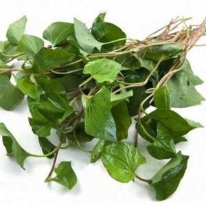 Kaw-thong-leaf