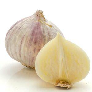 solo-garlic