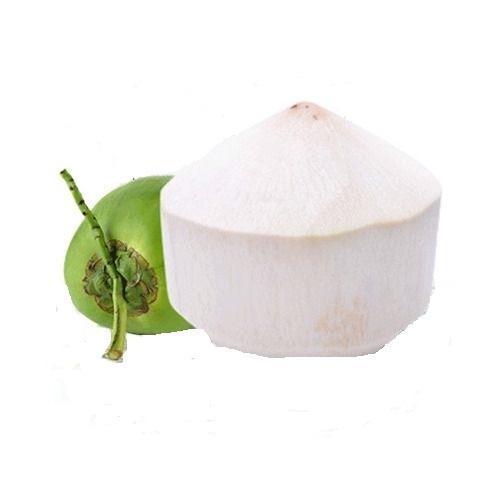 Ung-kokos