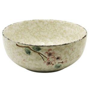 20190-Ceramic-Soup-Bowl-Snow-21cm