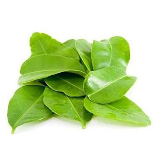 asian-choice-vietnamese-lime-leaves-la-chanh-24x100gr