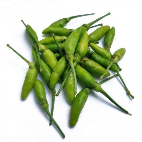 green-bird-chilli