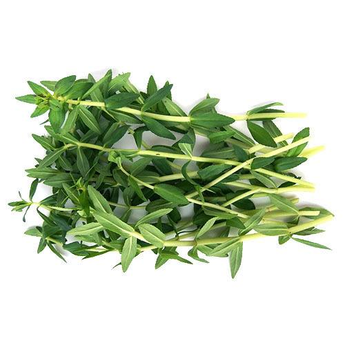 kayang-leaf-ngo-om